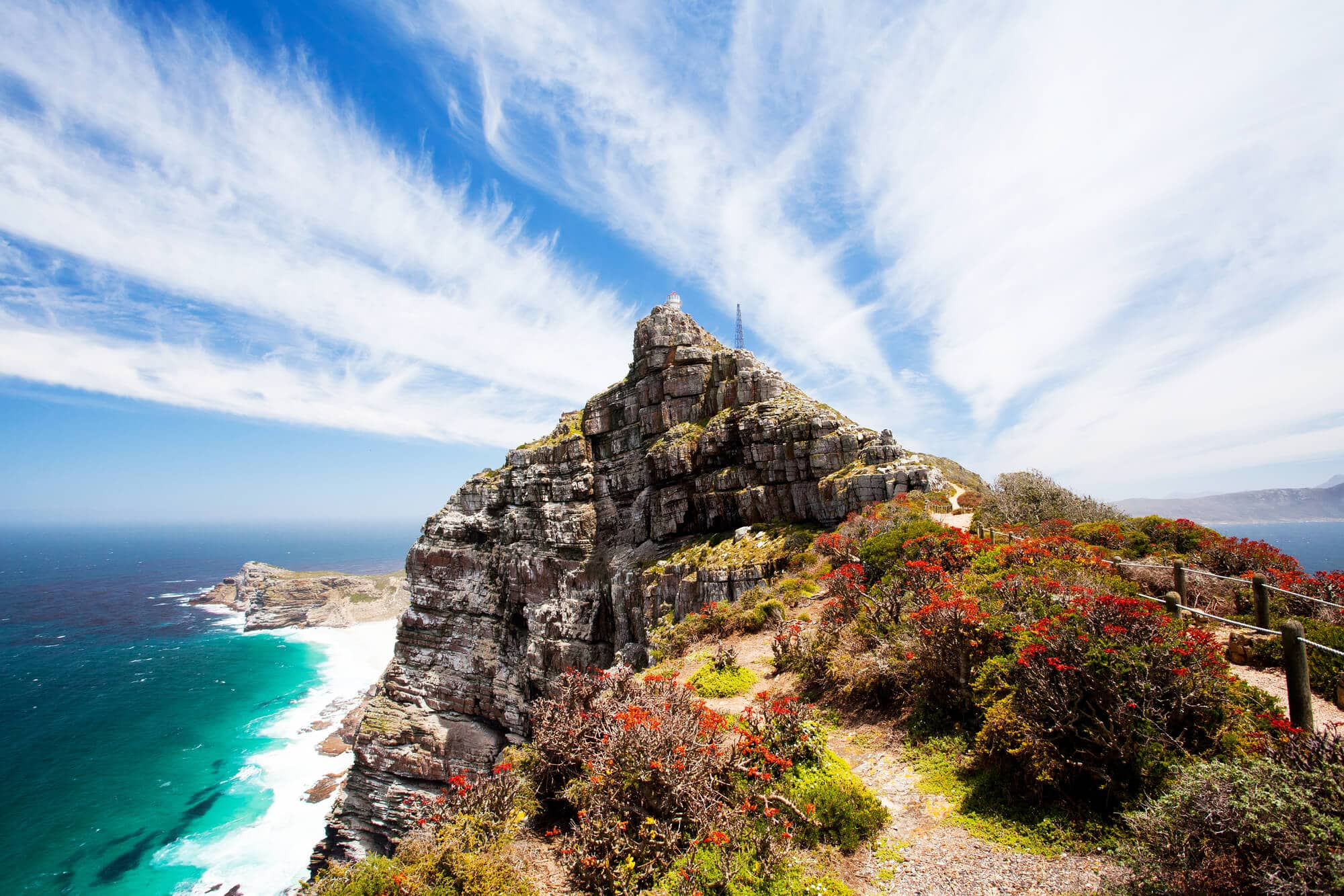 A rocky cliff with red flowers overlooks the ocean below