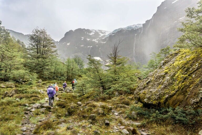 Hikers walk down a trail in the mist in a forest in the mountains