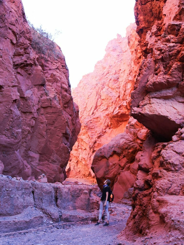 A woman stands in a red canyon looking up